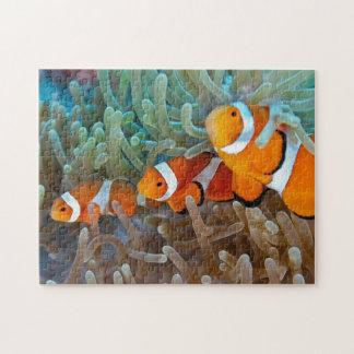 Clownfish Jigsaw Puzzle