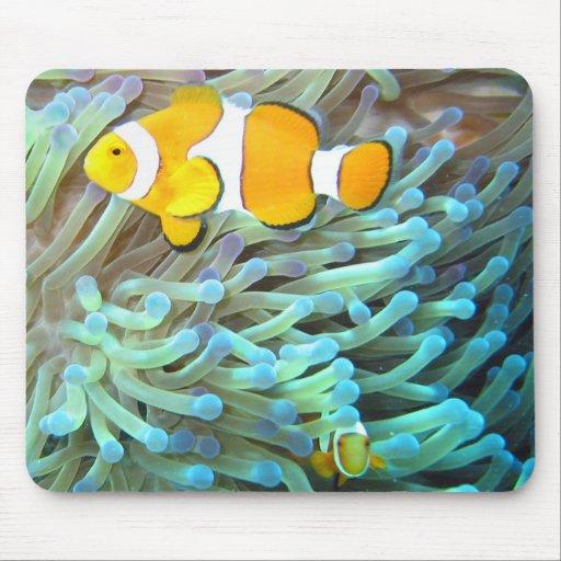 Clownfish Mouse Mats