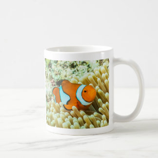 Clownfish on the Great Barrier Reef Coffee Mug