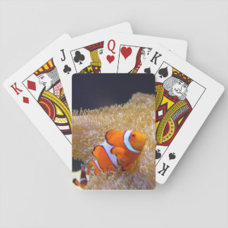 Clownfish Playing Cards