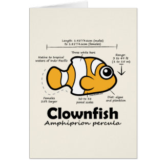Clownfish Statistics Card