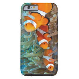 Clownfish Tough iPhone 6 Case