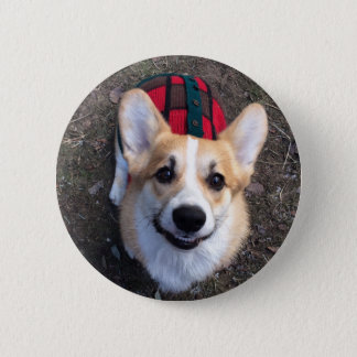 Clowning corgi photo pin