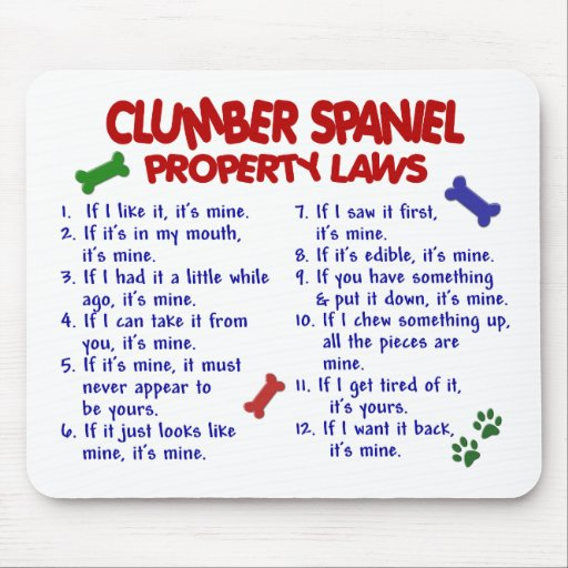 CLUMBER SPANIEL Property Laws 2 Mouse Mats