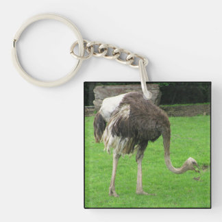 Clumsy the Ostrich Keychain Square Acrylic Keychain