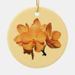 Cluster of Orange Orchids