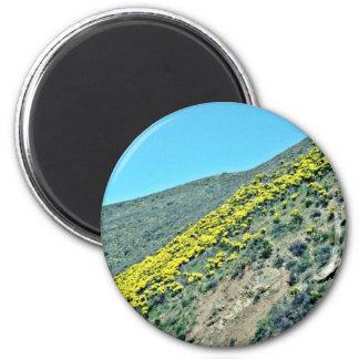 Cluster Of Saguaro Cacti Refrigerator Magnets