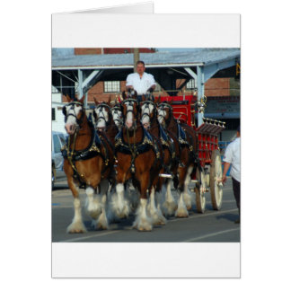 Clydesdale 6 horse hitch card