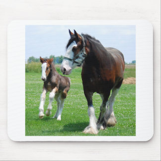 Clydesdale and Filly Mouse Mat