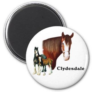 Clydesdale design magnet
