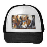 Clydesdale Draught   Horses Hat