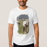 Clydesdale horses in a field, Northumberland, Tshirts