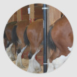 Clydesdale horses round stickers