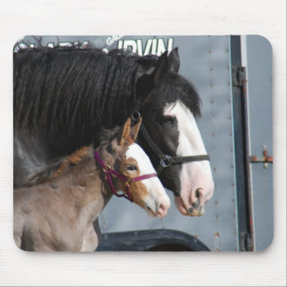 clydesdale mare and filly mousepad