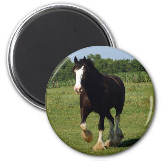 Clydesdale Running Magnet