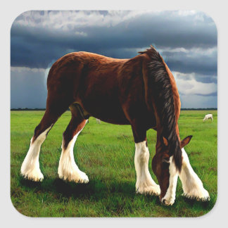 Clydesdale Storm Square Sticker