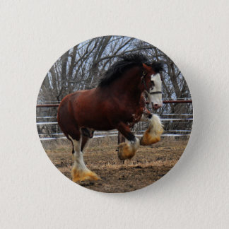 Clydesdale stud colt running 6 cm round badge