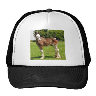 clydesdale stud mesh hat
