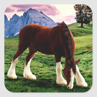 Clydesdale Sunset Square Sticker