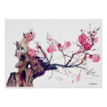 CMCarlson Cherry Blossom Poster