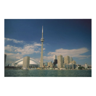 CN Tower and Skydome in Toronto, Ontario Wood Wall Decor