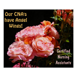 CNAs posters Certified Nursing Assistants Angels