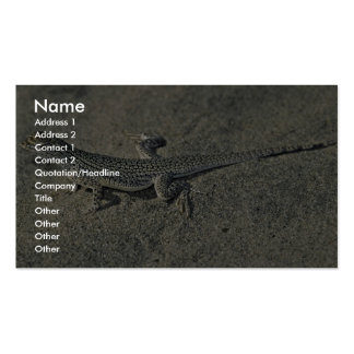 Coachella Valley National Wildlife Refuge Business Card Template