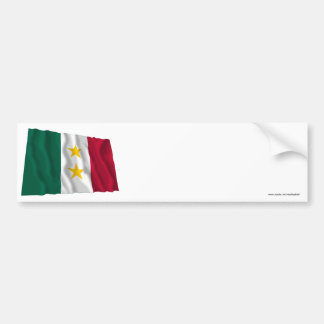Coahuila y Tejas Flag Bumper Stickers