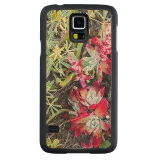 Coast Dudleya At Point Reyes National Seashore Maple Galaxy S5 Slim Case
