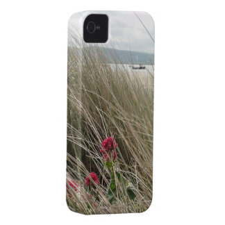 Coast scene iPhone case