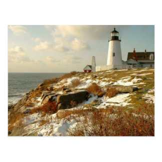 Coastal Beauty Postcard