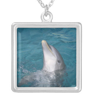 Coastal Bottlenose Dolphin Silver Plated Necklace