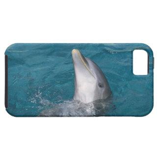 Coastal Bottlenose Dolphin Tough iPhone 5 Case
