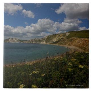 Coastal cliffs and landscape tile