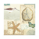Coastal Collage Gallery Wrap Canvas