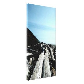 Coastal Driftwood Scene Stretched Canvas Print