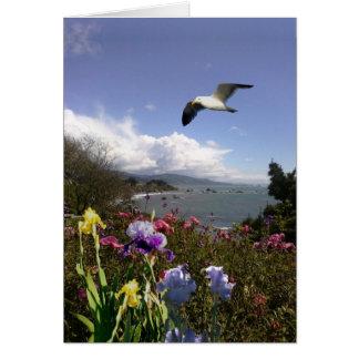 Coastal Living Greeting Card