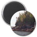 Coastal Pines Magnet