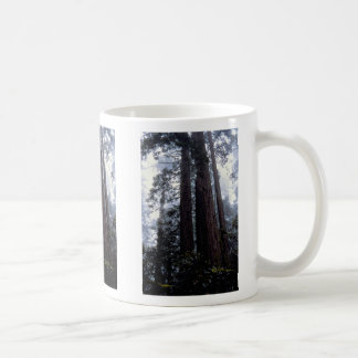 Coastal Redwoods, Lady Bird Johnson Grove, Califor Coffee Mug
