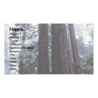Coastal Redwoods, Lady Bird Johnson Grove, Califor Pack Of Standard Business Cards