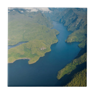 Coastal Scenery In Great Bear Rainforest Tile