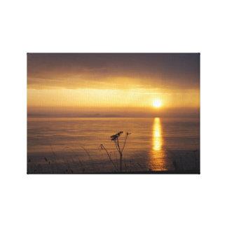 """Coastal Sunrise"" Canvas Print"