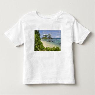 Coastal view on Mahe Island Toddler T-Shirt