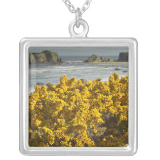 Coastal views, Bandon, Oregon 2 Silver Plated Necklace