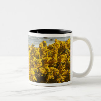 Coastal views, Bandon, Oregon 2 Two-Tone Coffee Mug