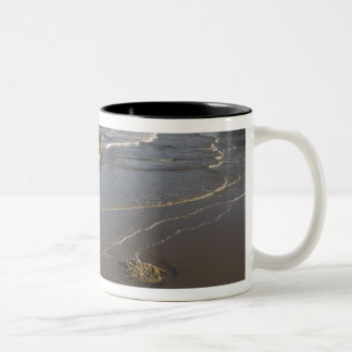Coastal views, Bandon, Oregon Two-Tone Coffee Mug