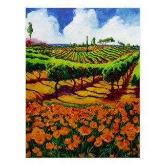 Coastal Vineyards Postcard