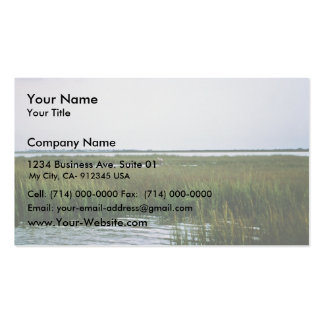 Coastal Wetlands Texas Business Cards