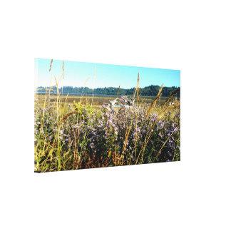 Coastal Wild Flowers Stretched Canvas Print