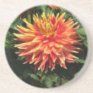 Coaster - Orange Chrysanthemum